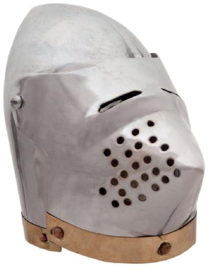 # RCSZ230939TS Miniature Pig Face Helmet